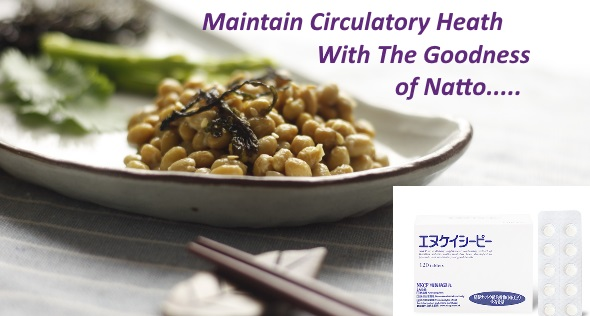 Maintain Circulatory Health With NKCP